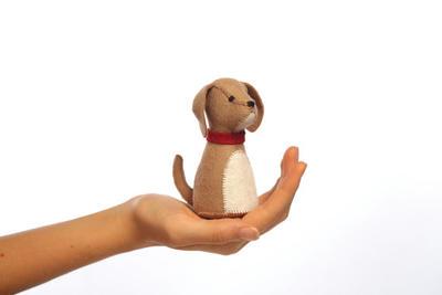 Pocket pup kit