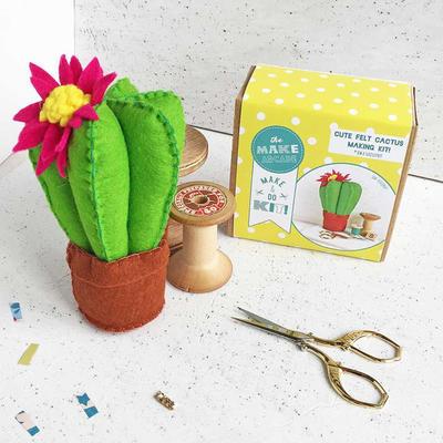 Felt cactus craft kit